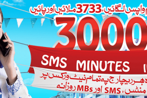 Zong sms packages weekly